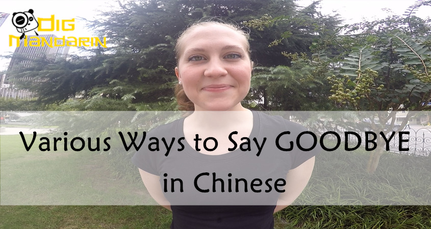 "7 Ways To Say ""GOODBYE"" In Chinese"
