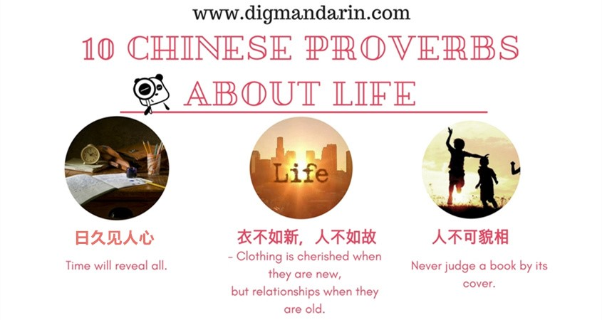 Chinese Proverbs About Life