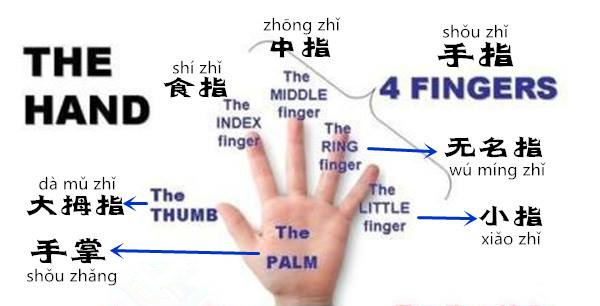 Learn Chinese Vocabulary