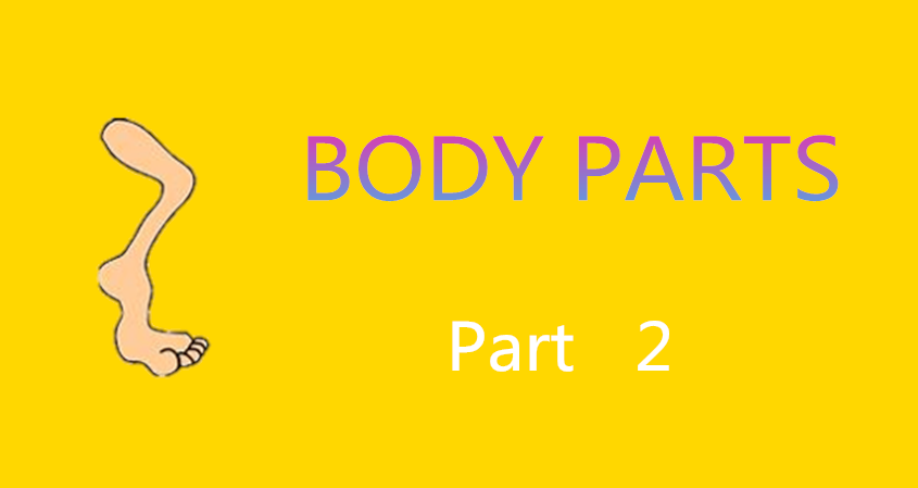 Learn Chinese Vocabulary In An Easy Way – Body Part 2