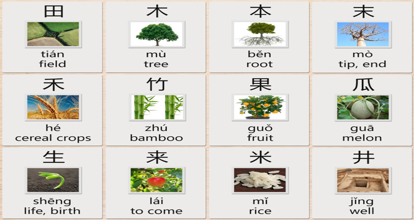 Chinese Characters About Farming And Nature