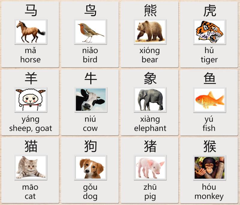 animals chinese