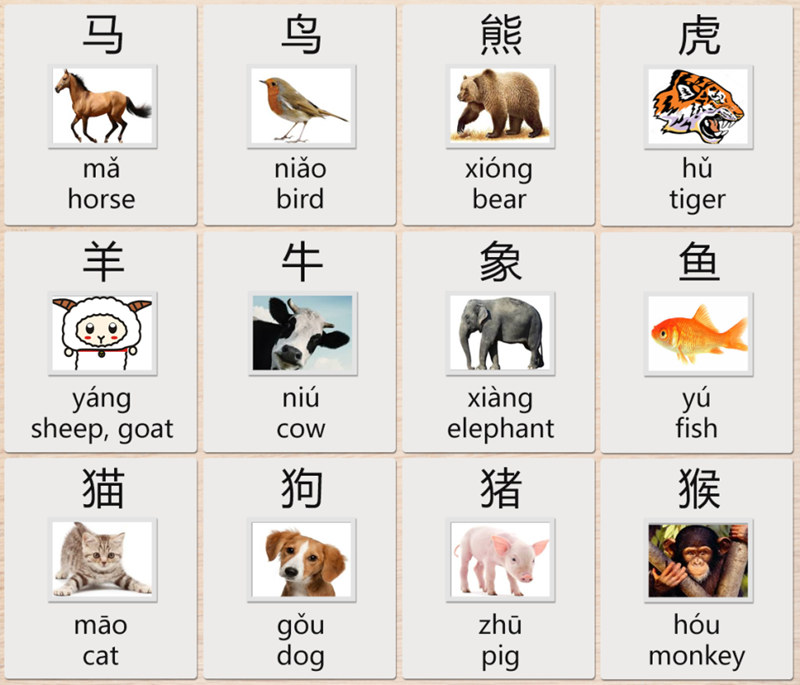 animals chinese
