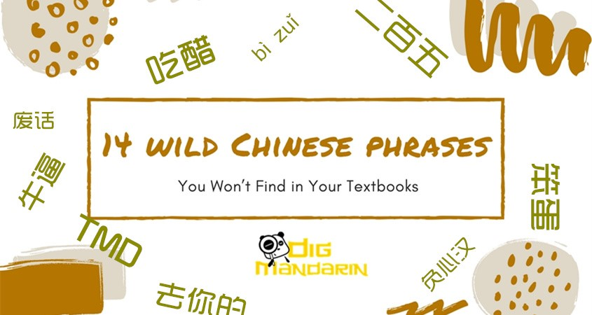 """14 """"Wild Chinese Phrases"""" You Won't Find in Your Textbooks"""