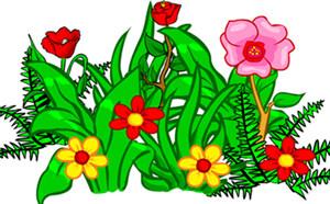 Plants Flashcards
